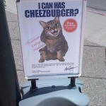 Credit union checking promo exploits 'LOLCats'