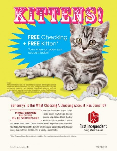 first-indy-free-kittens