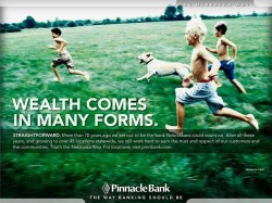 pinnacle-bank-straightforward