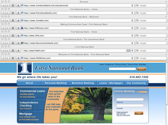 "You're looking at 8 browser windows stacked on one another, each with a website loaded for one of the dozens of First National Banks. If a consumer is looking for a specific ""First National Bank,"" the metatitles (the line of text atop each browser window) are no help: ""Personal,"" ""Home,"" ""Welcome."" This tells search engines -- and the people using them -- nothing useful. Only three of the eight ""First National Banks"" shown here use favicons (the icon that appears next to your URL, presumably your logo)."