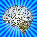 smart_brain