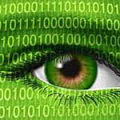 green_eye_data[1]