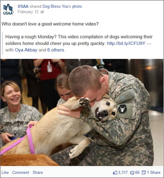 Lessons In Social Media Branding From Usaa