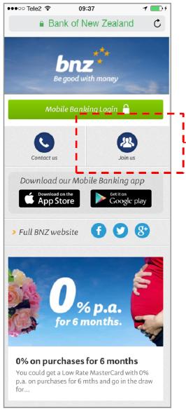 bnz_browser