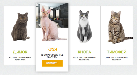 sberbank_free_mortage_cats