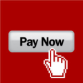 pay_now
