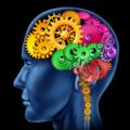 brain gears200