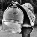 direct_mail_marketing_dead
