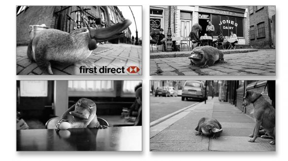 First Direct platypus small business ad