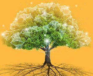 Article Image: How a Great Digital Experience Can Be Grown from Traditional Roots