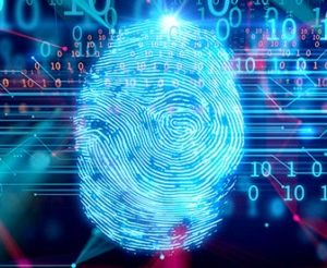 Article Image: Banks and Credit Unions Must Take Digital IDs Seriously Now