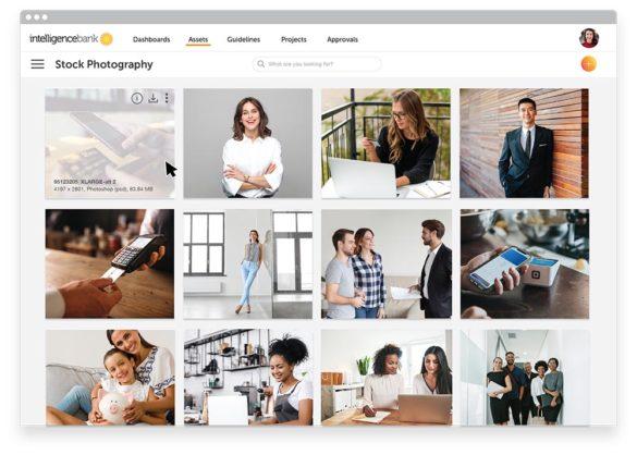 Intelligence finance DAM stock photography