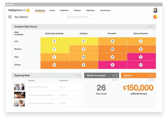 IntelligenceBank product shot risk dashboard