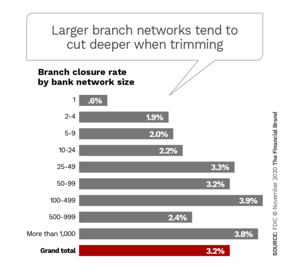 Larger branch networks tend to cut deeper when trimming