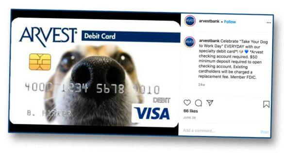 Dog nose Arvest card