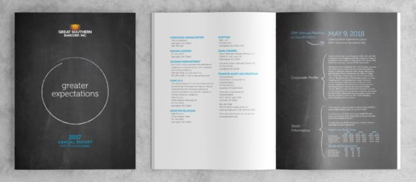 Great Souther Bank annual report