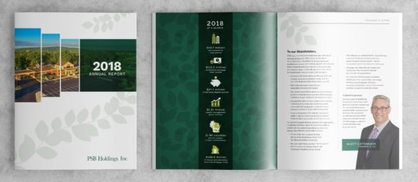 PBS Holdings annual report