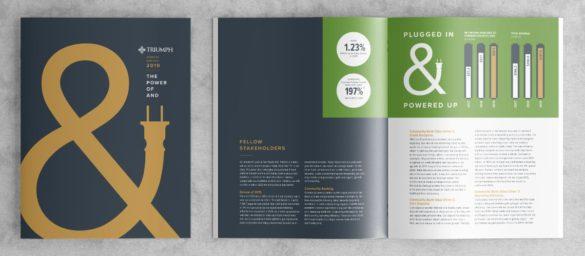 Triumph Bank annual report