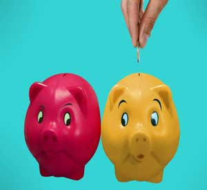 Image for Why Do Banking Consumers Switch?